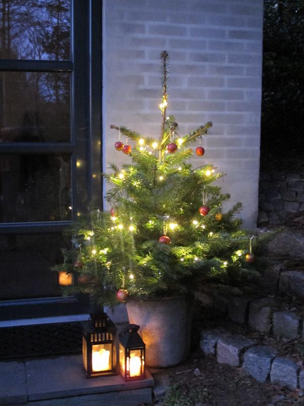 Juletræ 14-3