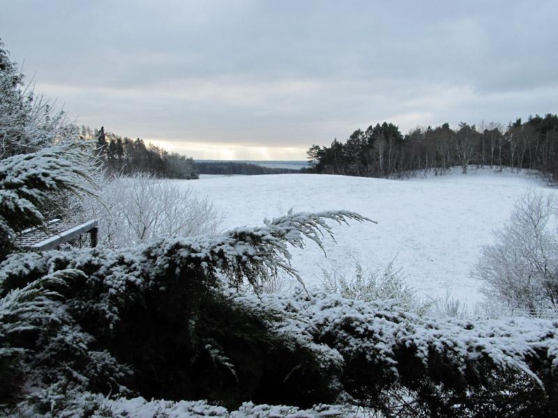 Vinter haven 14-3-1