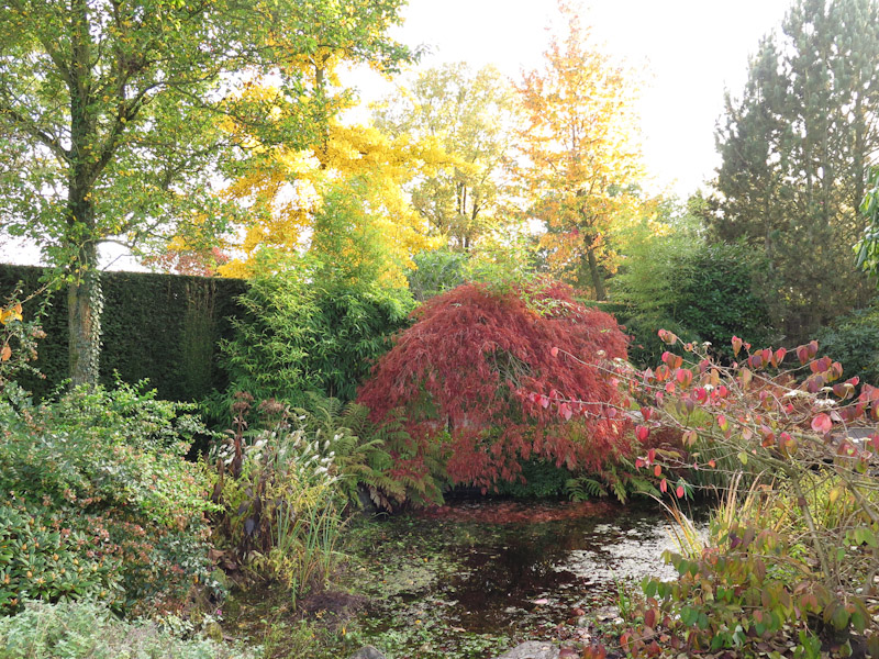 Boomkamp Gardens 1511-2