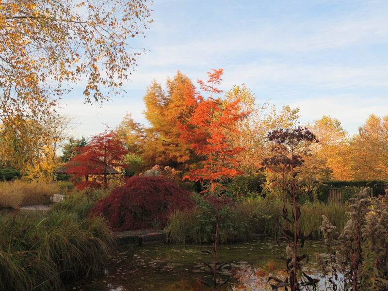 Boomkamp Gardens 1511-28